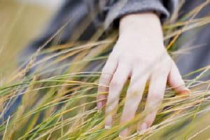Hand streicht durch hohes Gras