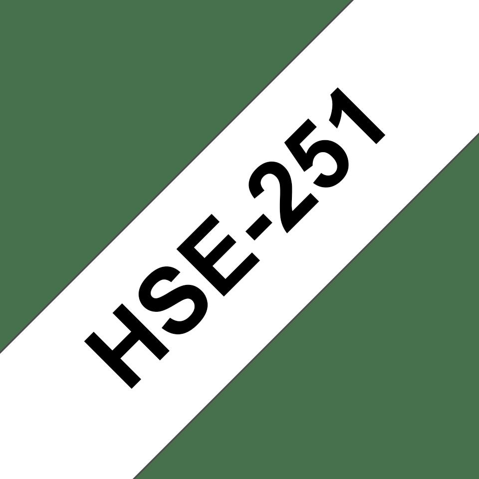 HSE251_main